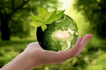 Ausschreibung – Nachhaltigkeitspreis 2021